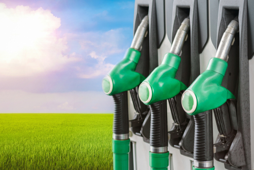 biofuel future fuel